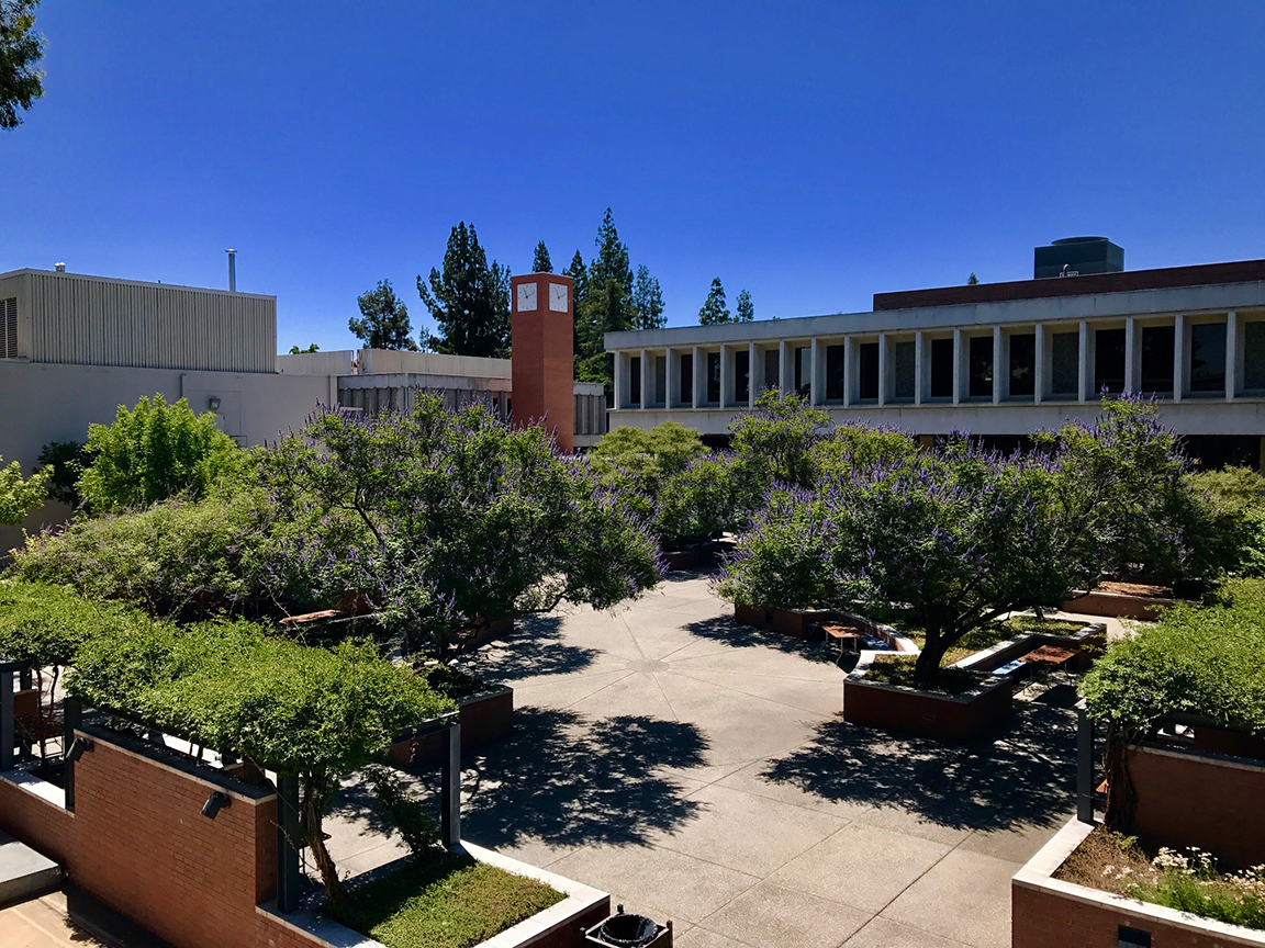 Fresno State Campus News | Photo of the week