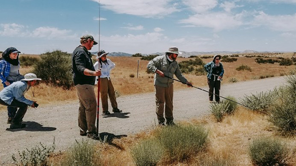 A group of five people, men and women, in the outdoors, watching as a man with a long stick searches for a lizard in a bush.