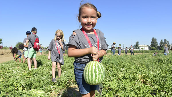 Girl carries a watermelon in a field at the Fresno State farm.