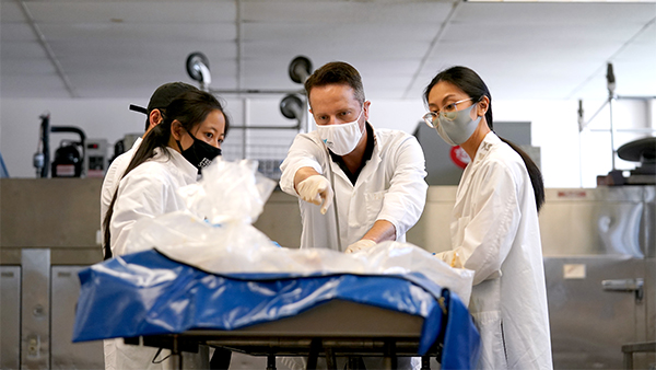 Dr. Caio Sarmento works with physical therapy students in the cadaver lab.