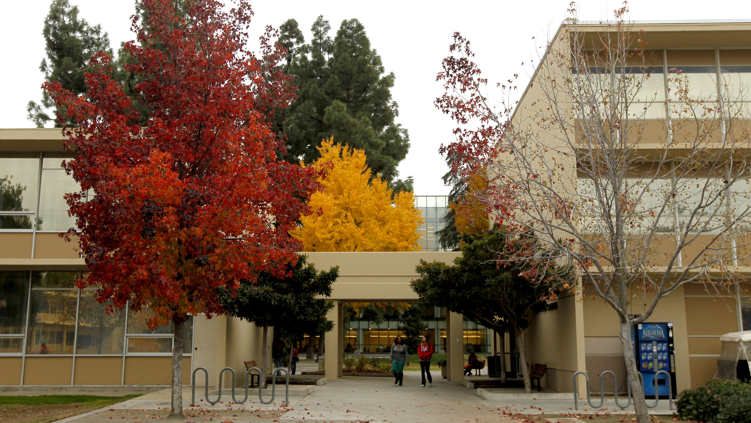 Red, yellow, and green leaves on trees. Two female students walking in the quad area of campus.